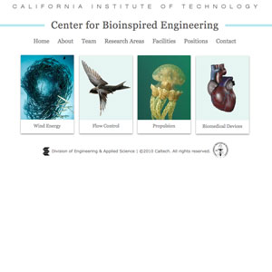Center for Bioinspired Engineering