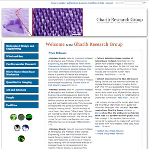 Gharib Research Group